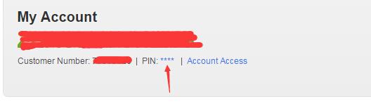 GoDaddy账户怎么查看和修改PIN码